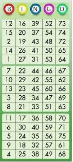 online bingo kort